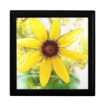 Black Eyed Susan Bouquet Gift Boxes