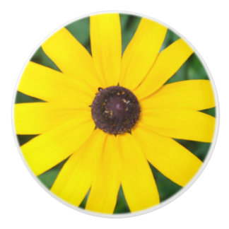 Black Eyed Susan Ceramic Knob