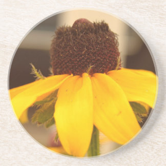 Black Eyed Susan Coaster