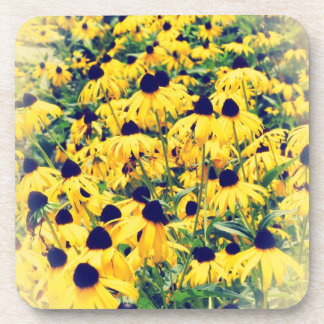 Black Eyed Susan Coasters