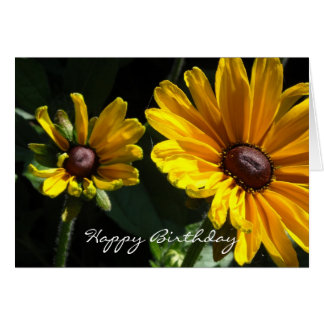 Black Eyed Susan Daisies Birthday Card