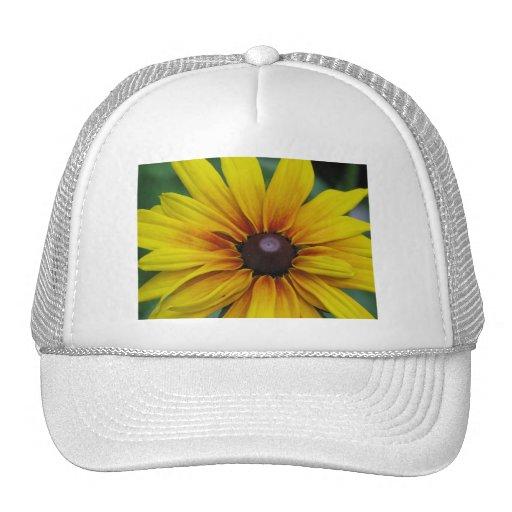 Black Eyed Susan Flower Baseball Cap Mesh Hats