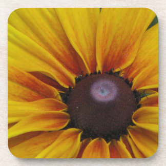 Black Eyed Susan Flower Cork Coasters