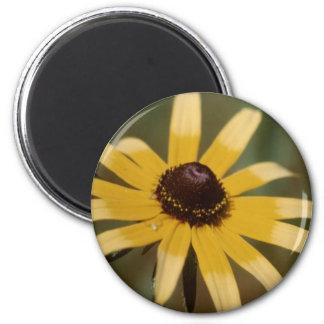 Black eyed susan flower magnet