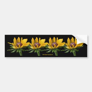Black Eyed Susan Flower Photo Bumper Sticker