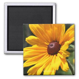 Black Eyed Susan Flower Photography Magnet
