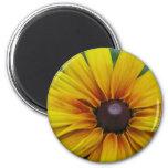 Black Eyed Susan Flower Round Magnet Refrigerator Magnets