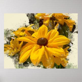 Black Eyed Susan Flowers Glowing in Sunshine Poster