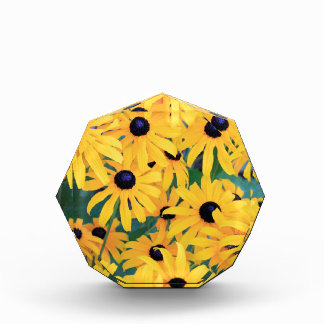 Black Eyed Susan Flowers in Deep Yellow Acrylic Award