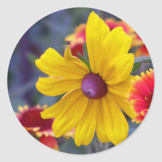 Black eyed susan flowers plus a fly colorful photo classic round sticker