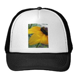 Black Eyed Susan Mesh Hat
