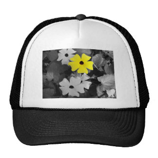 Black Eyed Susan Hats
