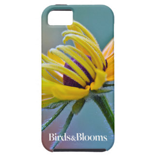 Black-eyed Susan iPhone SE/5/5s Case