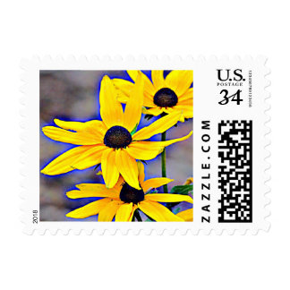 Black Eyed Susan (Maryland) Postage