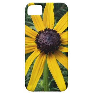 Black Eyed Susan MD Flower iPhone SE/5/5s Case