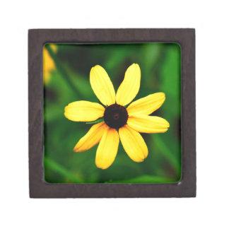 Black Eyed Susan Necklace or Trinklet Gift Box