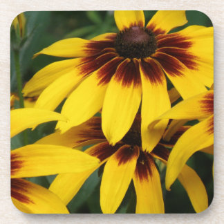 Black Eyed Susan Photo Cork Coasters