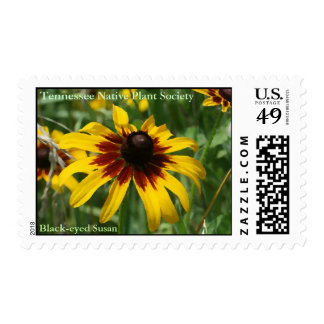 Black-eyed Susan Postage Stamps