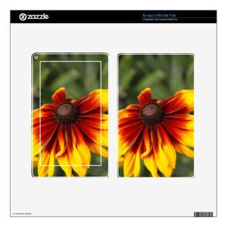 Black-eyed-Susan (Rudbeckia hirta) Kindle Fire Decal