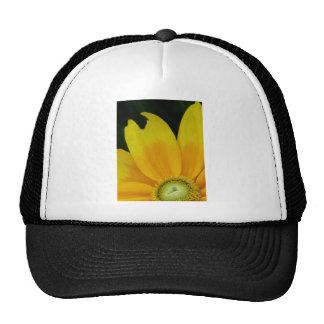 """Black-eyed Susan, Rudbeckia hirta """"Prairie Sun"""" Trucker Hat"""