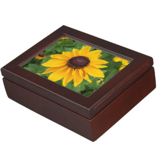 Black Eyed Susan Sitting Pretty Keepsake Box