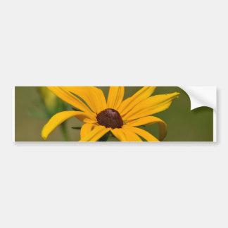 Black Eyed Susan Solitude Bumper Sticker