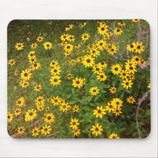 Black-Eyed Susans 2 Horizontal Mouse Pad