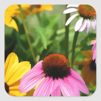 Black Eyed Susans and Pink Coneflower Daisy Garden Stickers