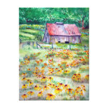 Black-Eyed Susans Barn Wrapped Canvas Print
