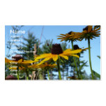 Black eyed Susans Double-Sided Standard Business Cards (Pack Of 100)