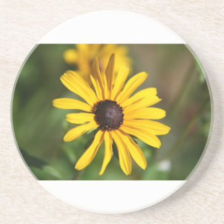 Black eyed susans drink coasters