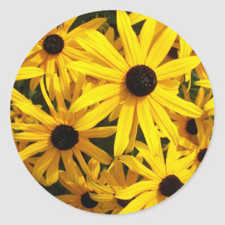 Black Eyed Susans Floral Photo Classic Round Sticker