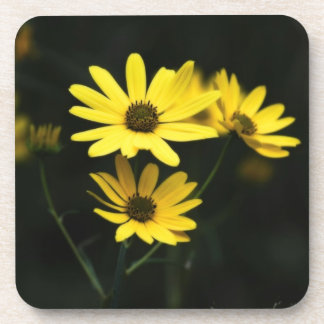 Black Eyed Susans Flowers Drink Coffee Coasters