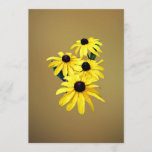 Black-Eyed Susans in a Row