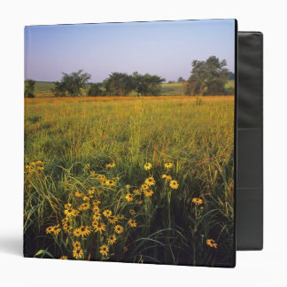Black eyed Susans in tallgrass prairie at Neil 3 Ring Binders
