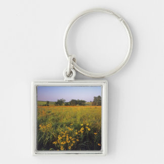 Black eyed Susans in tallgrass prairie at Neil Silver-Colored Square Keychain