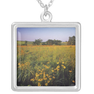 Black eyed Susans in tallgrass prairie at Neil Square Pendant Necklace