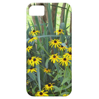 Black Eyed Susans iPhone 5 Covers