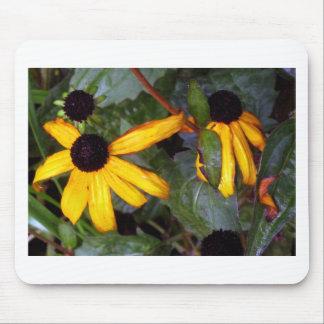 Black Eyed Susans - last of summer Mouse Pad