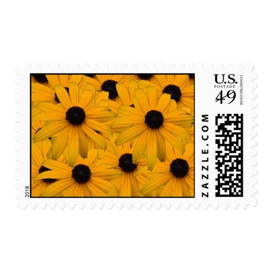 Black eyed susans postage