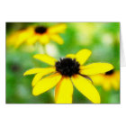 Black Eyed Susans - Romantic and Dreamy card