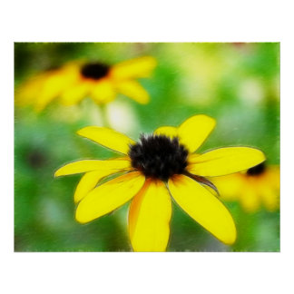 Black Eyed Susans - Romantic and Dreamy Poster