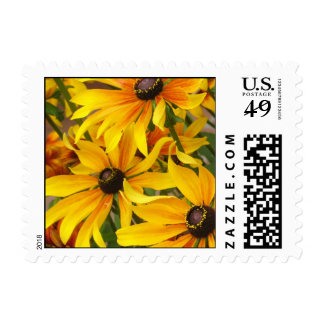 Black-Eyed Susans Stamp