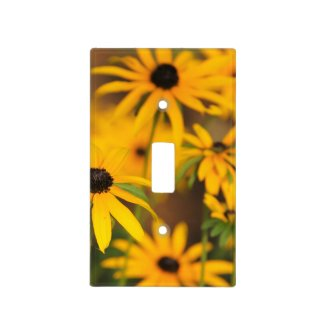 Black Eyed Susans Switch Plate Covers