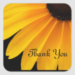 Black Eyed Susans  Theme Stickers