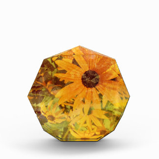 Black Eyed Susan's Wildflower Abstract Design Award