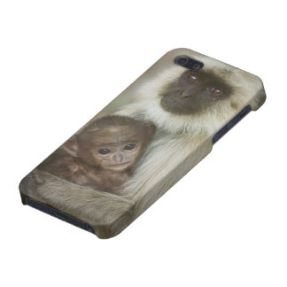 Black-face Langurs, mother with baby, in Cover For iPhone SE/5/5s