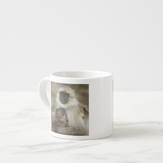 Black-face Langurs, mother with baby, in Espresso Cup
