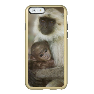 Black-face Langurs, mother with baby, in Incipio Feather® Shine iPhone 6 Case