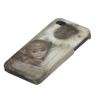 Black-face Langurs, mother with baby, in iPhone 4 Covers